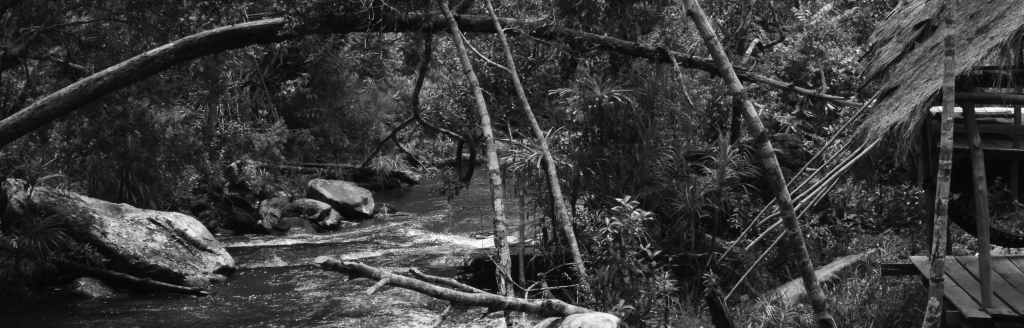 Cambodia Bladed Part 6 - Kirirom 2 - d