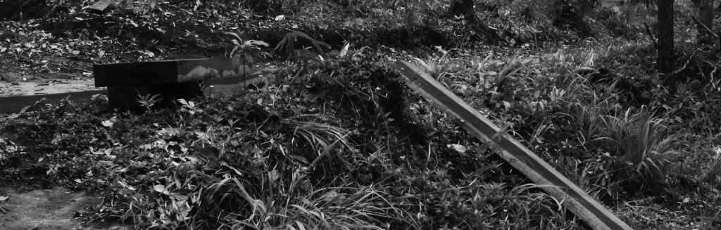 Cambodia Bladed Part 6 - Kirirom 2 - e