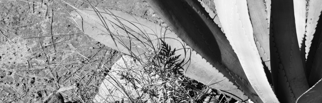 Cambodia Bladed Part 6 - Kirirom 2 - f