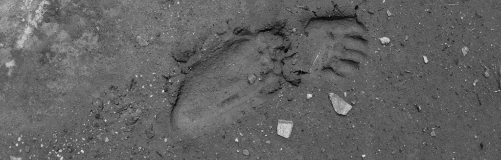 Cambodia Bladed Part 6 - Kirirom 2 - r