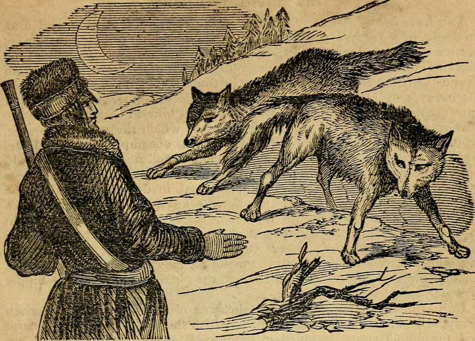 Kit Carson menaced by wolves.