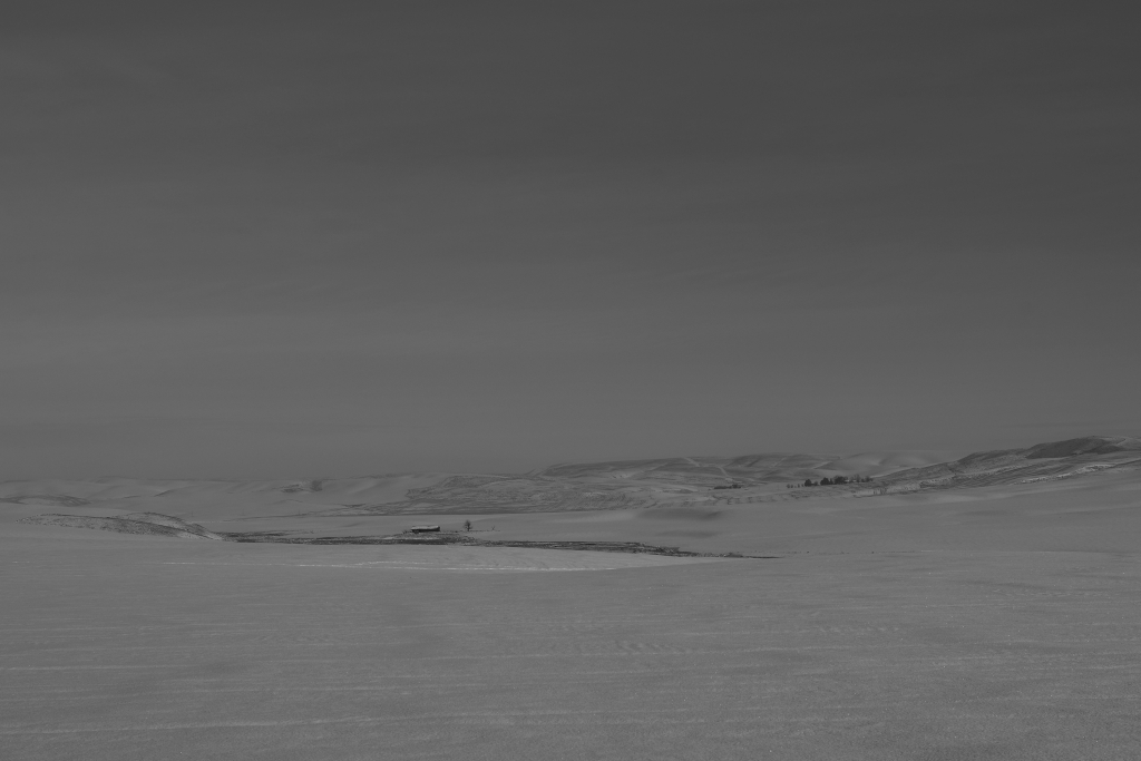 palouse-dsc_0222-bw-true-small