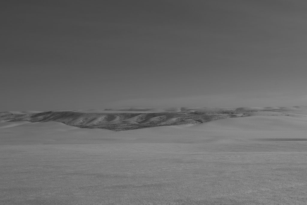 palouse-dsc_0224-bw-true-small