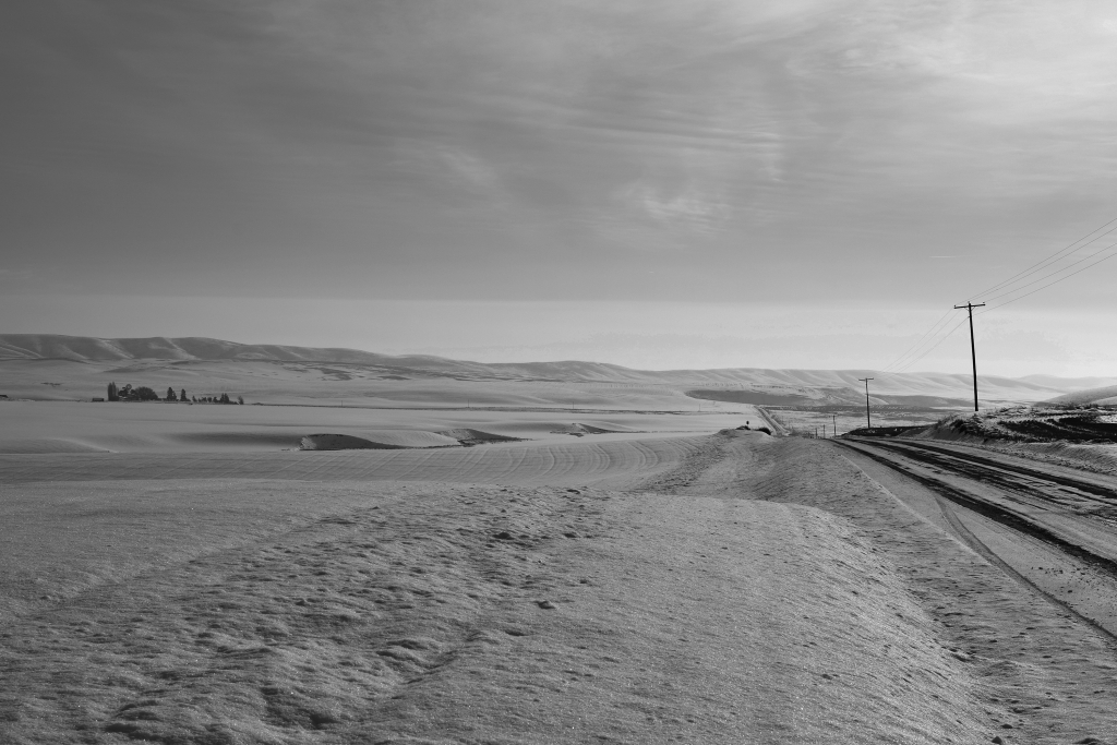palouse-dsc_0225-bw-true-small