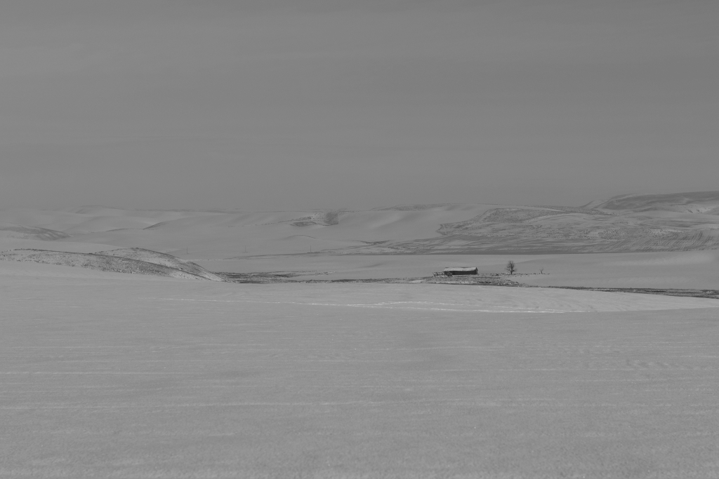palouse-dsc_0232-bw-true-small