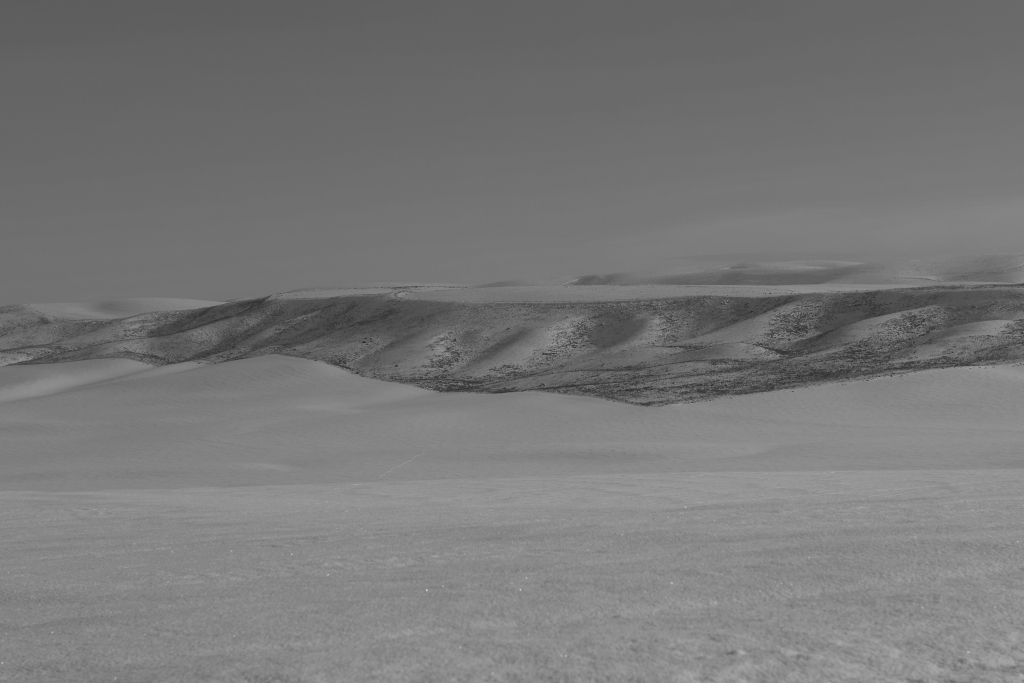 palouse-dsc_0234-bw-true-small