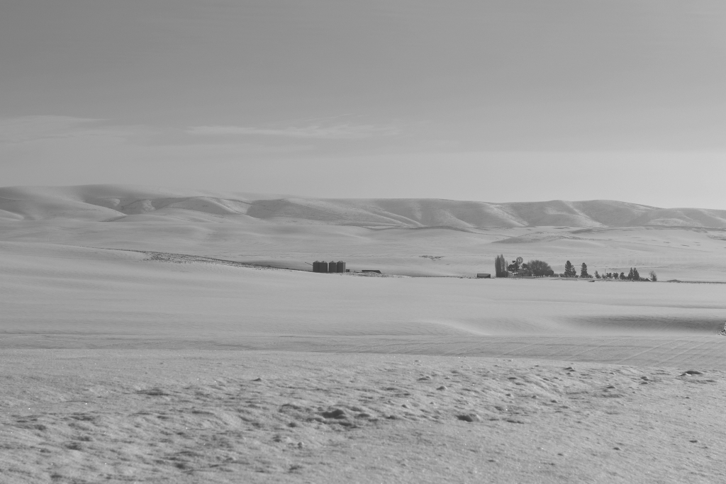 palouse-dsc_0235-bw-true-small