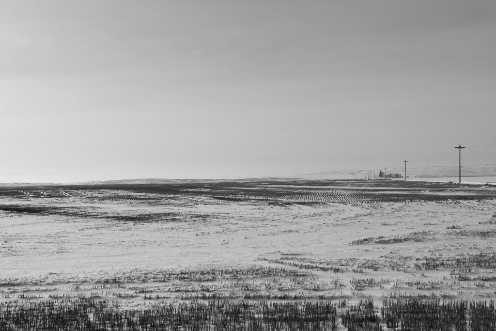 palouse-dsc_0257-bw-true-small