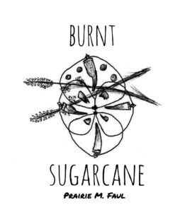 Illo for review of Prairie M. Faul's chapbook 'Burnt Sugarcane'.